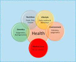 Key Factors to Understand in a Health Policy