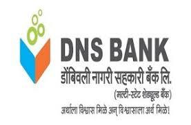 डीएनएस बैंक मुद्रा लोन