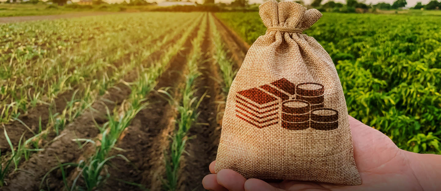 Thanjavur: Rs 11,500 crore worth crop loans for delta farmers